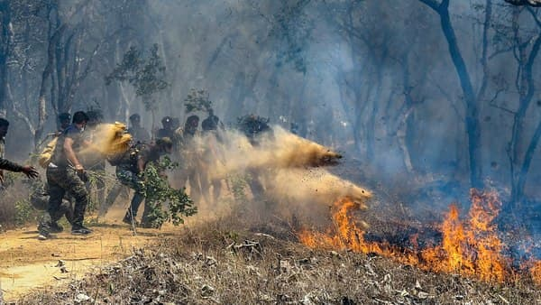 Officials assist in extinguishing a forest fire at Bandipur Tiger Reserve, in Bandipur, Sunday. (PTI)