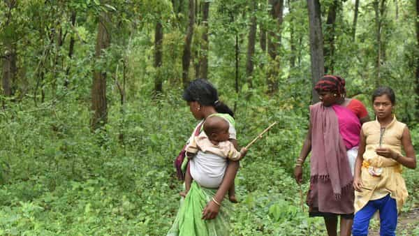 Poor and illiterate forest dwellers may not have got due opportunity to substantiate their claims, says tribal ministry.  (Photo: HT)