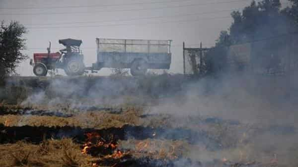 In five years, the economic loss due to burning of crop stubble and firecrackers is estimated to be $190 billion, or nearly 1.7% of India's GDP. (PTI)