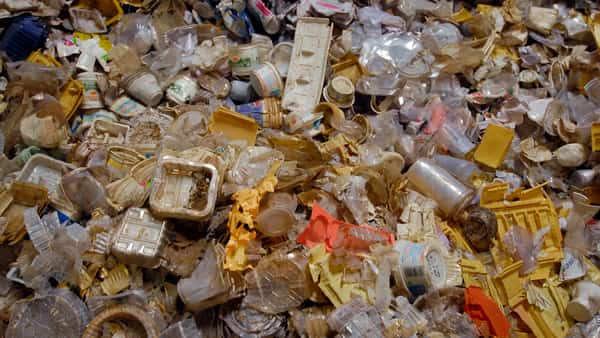 Govt bans import of solid plastic waste by SEZs, EOUs