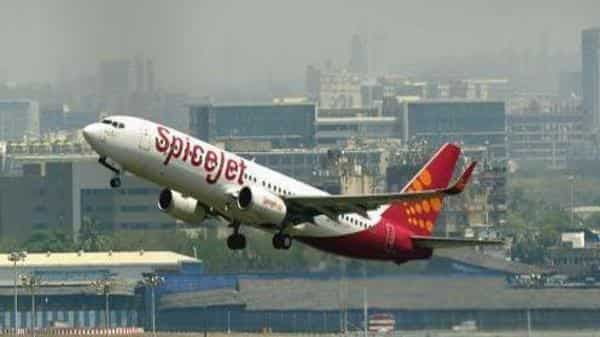 On a year to date basis, SpiceJet shares are up 43%