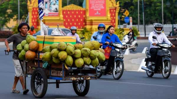 Niu Neer proposes to put premium quality tender coconuts in the hands of the consumer, Photo: AFP