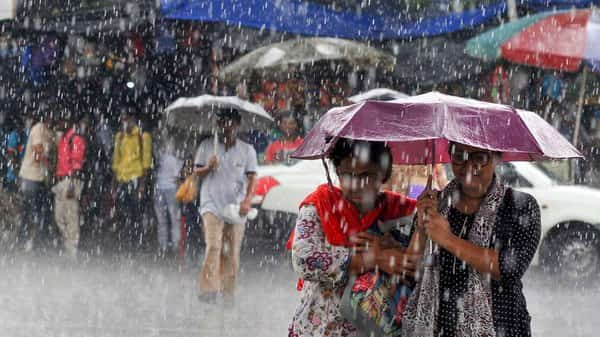 India receives above normal rains this week, spurring crop planting