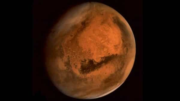 Do we need a backup planet to survive?