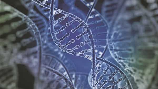 Opinion Forensic Dna Technology And The Miasma Of Distrust