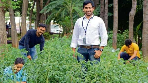 Subramanyam D. and his colleagues at IBM take a break from work every day to look after their gardening plots in a Bengaluru tech park
