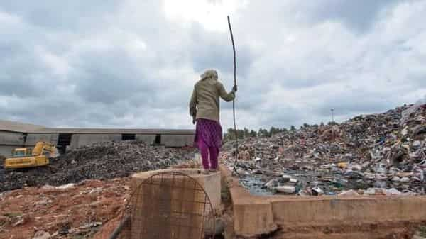 Government departments may look to startups for innovative solutions for waste management and other social issues. (Photo: Aniruddha Chowdhury/Mint)