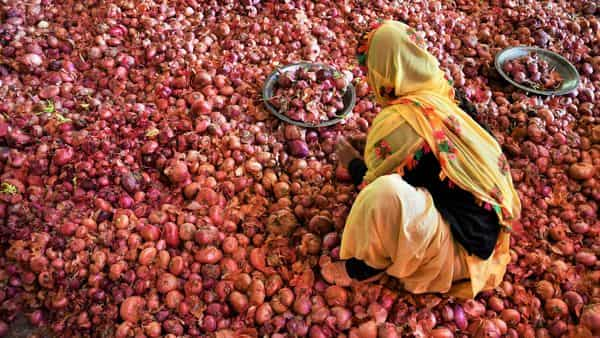 Onion prices might dictate RBI's February MPC meet: Brokerage
