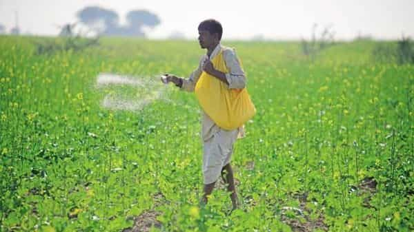 The survey found that farmers simply don't have the wherewithal to pay upfront the full fertilizer price, which is four times the subsidized price that they actually pay. (Photo: Mint)