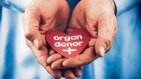 Keep in mind that if you donated an organ before buying a policy and did not declare it to the insurer at the time of buying, the insurer can deny renewal if it. (Photo: iStock)