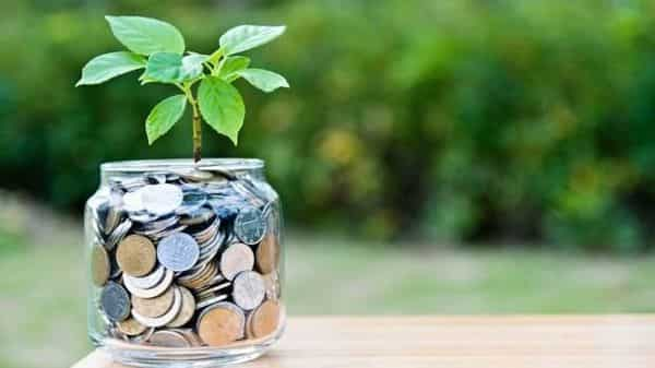 Equity funds usually have low cash levels as these schemes are vehicles meant for long-term investments. (Photo: iStock)