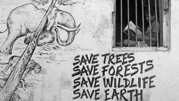 The gram sabha-based forest governance has to be implemented in a large way to maintain sustainability of forests. (Photo: Bhushan Koyande)