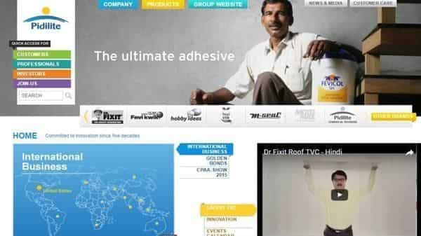 Pidilite S Results Prove Why It Pays To Stick With Leader In Tough Times