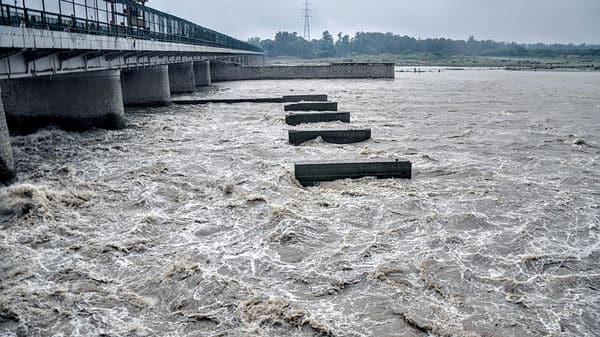 A view of the Yamuna river in New Delhi. (ANI)