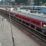The Indian Railways had placed an order with SAIL for supply of 13.5 lakh tonne rails in the current financial year.