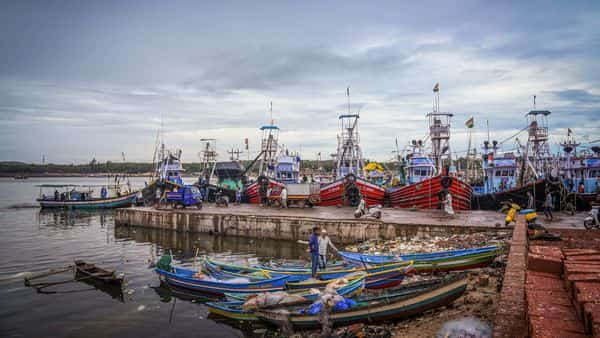 Boats are anchored at a dock due to a red alert for Cyclone Nisarga, in Ratnagiri district. (PTI)