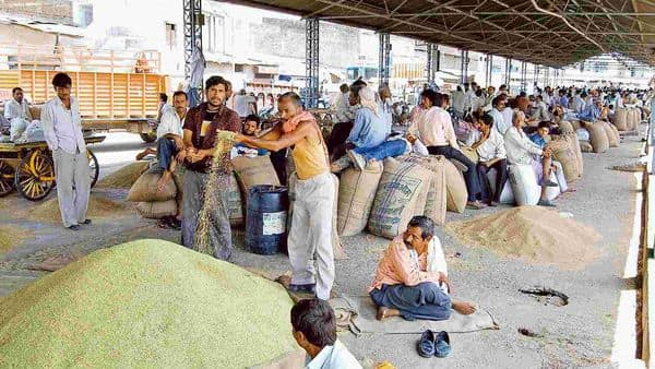 In the new regime, the farmer will have the freedom to sell outside AMPCs. (Photo: HT)