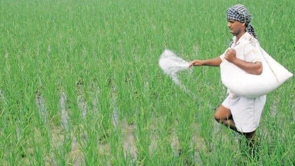 Fertiliser sales jump 83% to 111.61 lakh tonnes in Apr-June: Govt