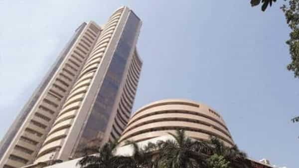 Last month, DIIs were net buyers of Indian equities worth Rs2,461.41 crore (Photo: Mint)
