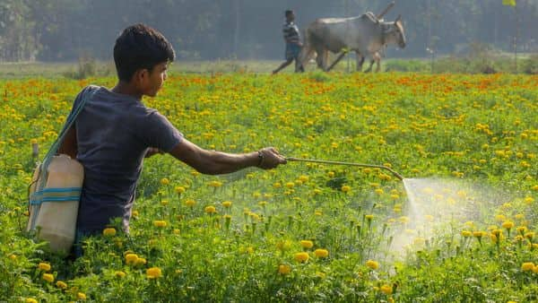 Does India have a problem of too many farmers?
