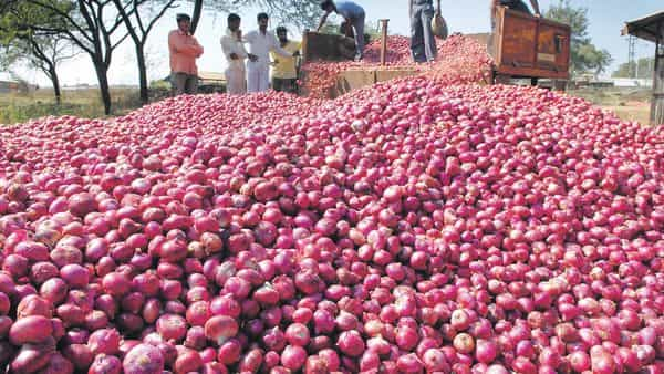 The government had in March lifted nearly six-month-old ban on export of onions to help boost the income of farmers (Photo: AP )