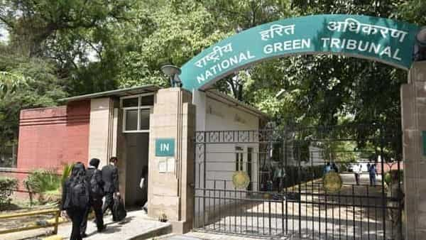 NGT slams NOIDA authority over-discharge of waste into green belts