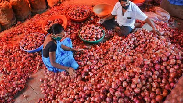 Maharashtra government to write to Centre for onion export ban roll-back