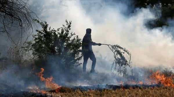 The recent spike in Delhi pollution has been caused due to crop stubble burning in Punjab and Haryana.