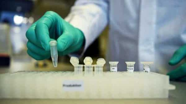 An employee demonstrates research workflow on a vaccine for the coronavirus at a laboratory. (REUTERS)