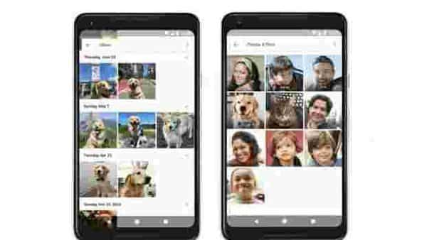 Google Photos can identify pets using AI and group them.