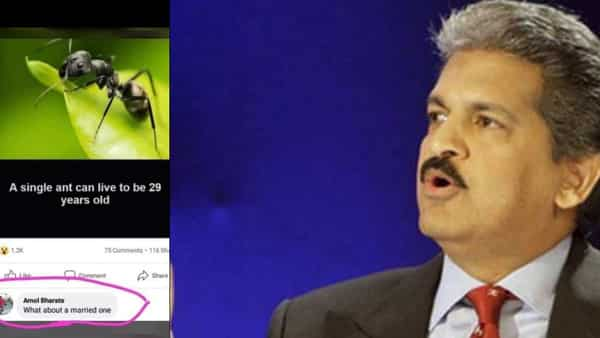 Anand Mahindra termed it as one of the funniest jokes about the perils of marriage.