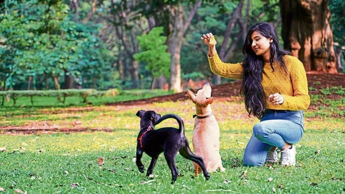 Kappi and Luna in Bengaluru's Cubbon Park with Shruti Raghuraman. Courtesy: Tarun Saldanha.