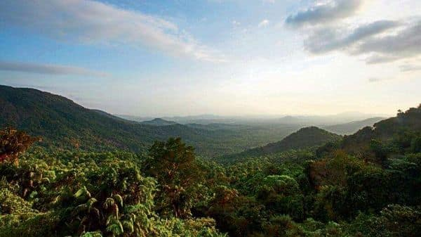 A view of the Mollem National Park, which spills across 240 sq. km into the Western Ghats ( Photo: Alamy)