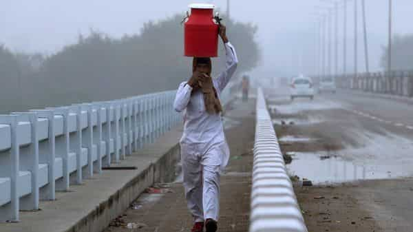 A milkman carries a can of milk on a cold and foggy morning  (AP)