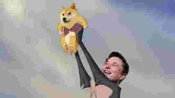 Elon Musk buys Dogecoin for his 'lil X' (Mint)