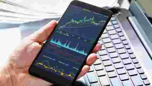 As of 31 March, 65.69% is invested in Indian equities, and 30.21 is invested in foreign equities. The fund holds a 4.10% in cash, debt & money market instruments and arbitrage positions. (iStock)