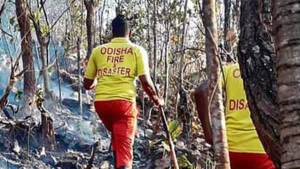 Le feu de forêt d'Odisha est sous contrôle