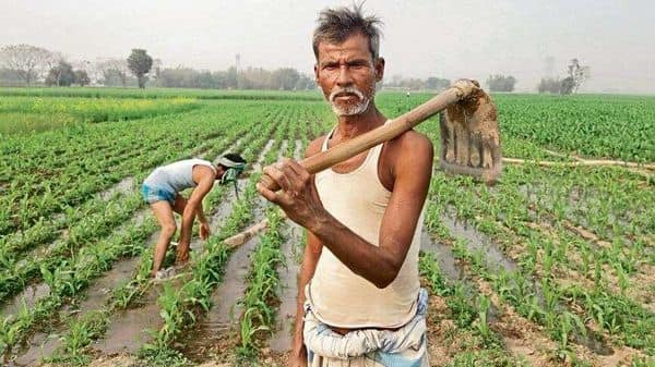 What trade freedom did to Bihar's farmers