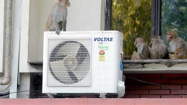Tata group firm Voltas, a leading player in the segment, has already increased the prices. (ANI )