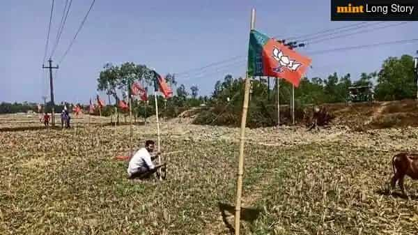 A BJP worker inserts campaign flags in Nandigram where CM Mamata Banerjee is contesting against party turncoat Suvendu Adhikary (Photo: Sayantan Bera/Mint)