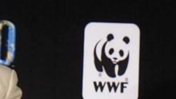 In backing the call, the companies commit not to source any minerals from the seabed, to exclude such minerals from their supply chains, and not to finance deep seabed mining activities, the WWF said in a statement.