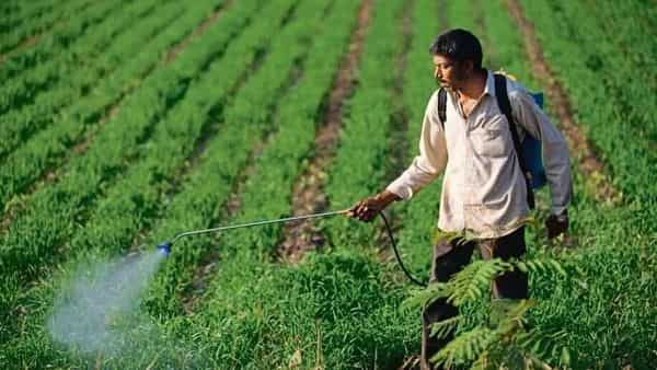 ASHA accused the ministry of chemicals and fertilizers of acting at the cost of the right to life of agricultural workers and farmers (Photo: Mint)