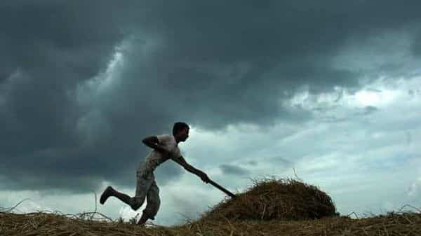 IMD's forecast is similar to that of Skymet announced earlier this week, although the private agency has forecast that the monsoon rain is likely to be 103% of the 50-year LPA. (AFP)