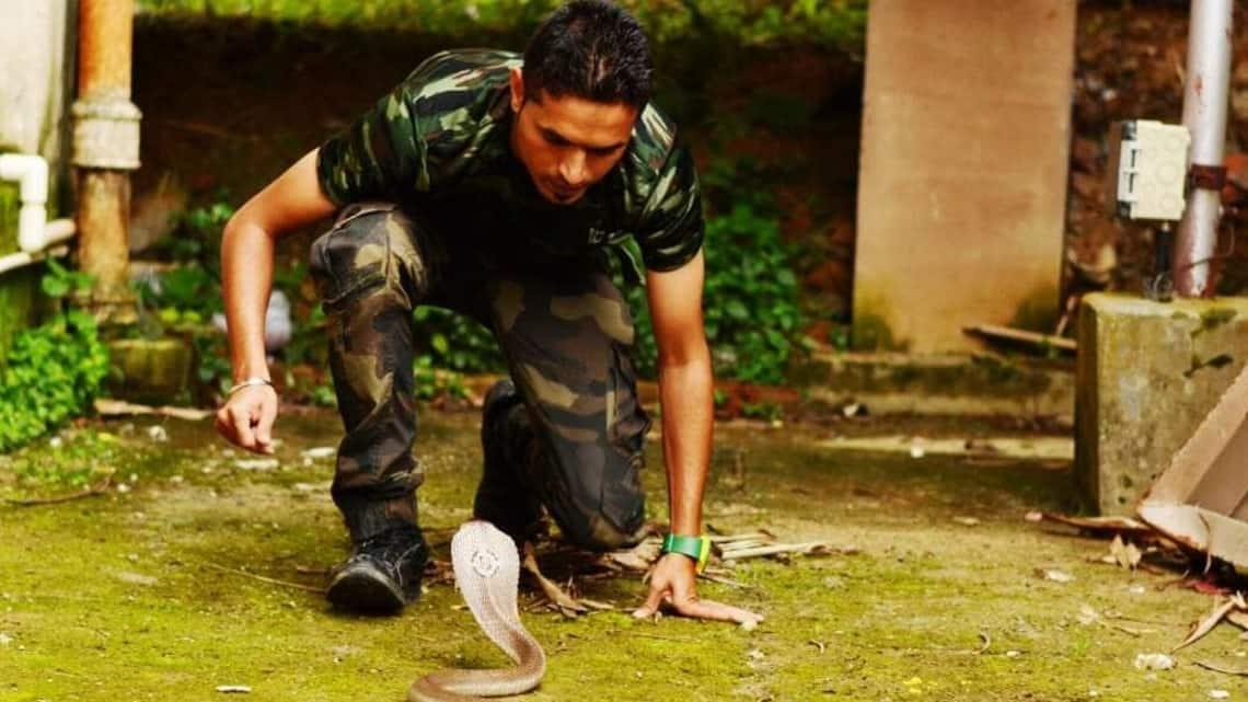 Amol Jadhav catching a monocled cobra.