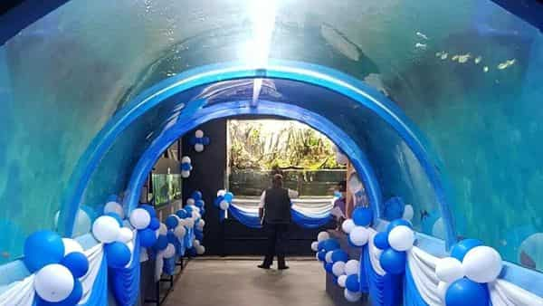 The aquarium is based on the Amazon River concept and promises to be a visual treat and a passenger's delight