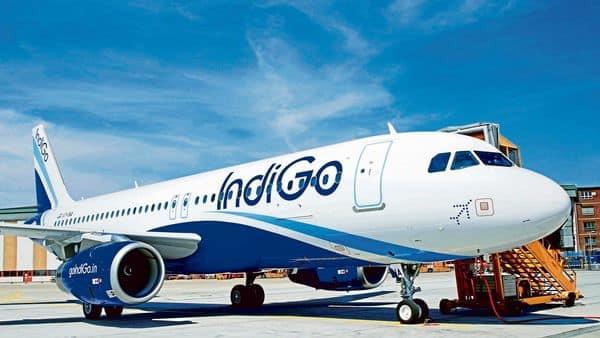IndiGo lists international travel guidelines for its flights.