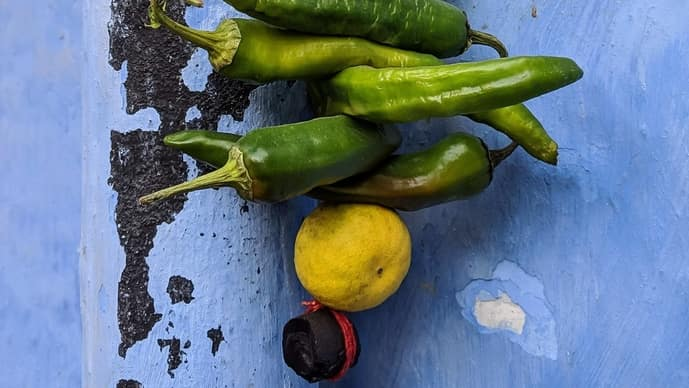 Nazar battus (charms) of lemon and green chillies are strung in front of vehicles and entrance doors for they are believed to ward off the eyil eye. (Vindhya Chandrasekharan, Pexels)