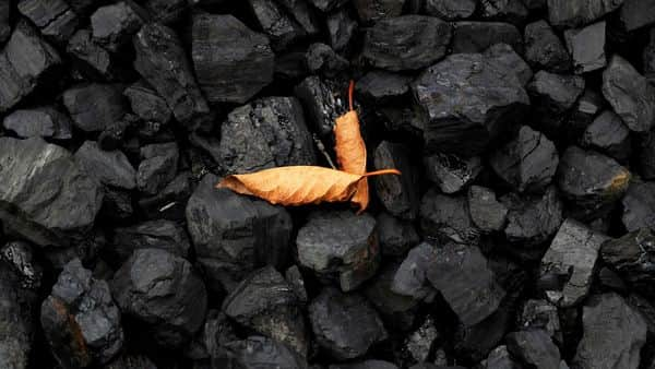 Of Coal India's production target of 670 mt for the current financial year, demand from the power sector is expected to account for around 545 mt. (Photo: Reuters)