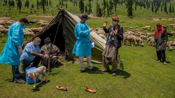 Health workers talk to Kashmiri nomads during a COVID-19 vaccination drive in Tosamaidan, southwest of Srinagar. (AP)