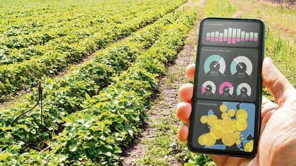 Millions of farmers in India, who often rely on luck or favourable weather for a decent harvest, could do well with access to better technologies. It also doesn't cost much. (Photo: iStock)